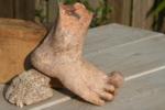 Carlita voet 2